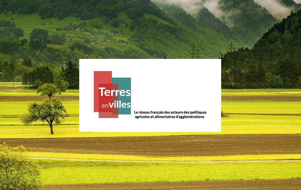 Participez à l'enquête de Terres en ville concernant la prise en compte des agriculteurs dans la co-construction et la mise en oeuvre des politiques alimentaires territoriales