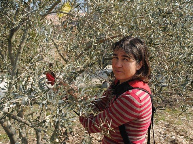 Résultats d'enquête : Femmes paysannes, s'installer en agriculture