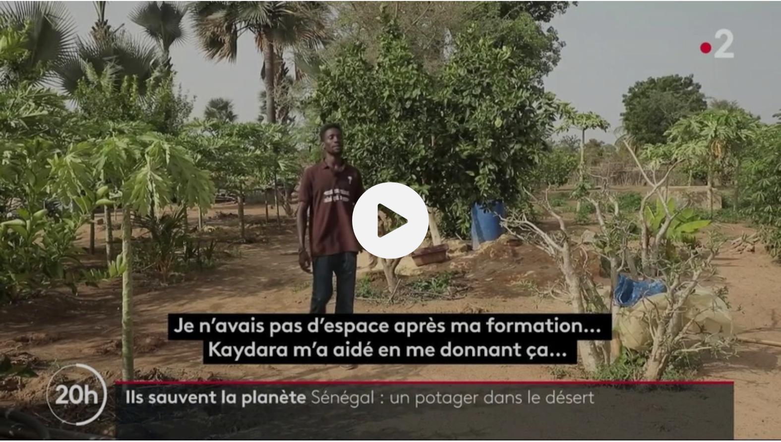 Reportage sur Gora Ndiaye et sa ferme école agro-écologique de Kaydara au Sénégal