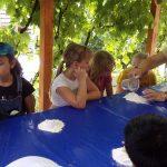 Développer l'accueil social à la ferme: l'accueil de mineurs – formation les 11 et 12 mars 2021