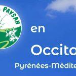 Les nouvelles du journal AP Occitanie de printemps