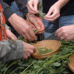 Un adhèrent propose des formations à la transition écologique
