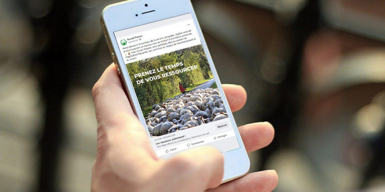 Campagne de publicité de printemps pour le réseau : les résultats